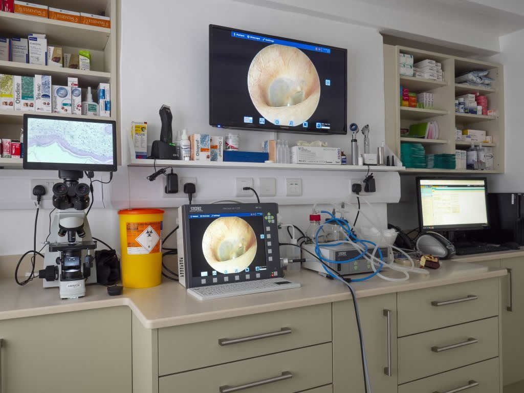 Consulting Room at Dermvet Skin & Ear Clinic
